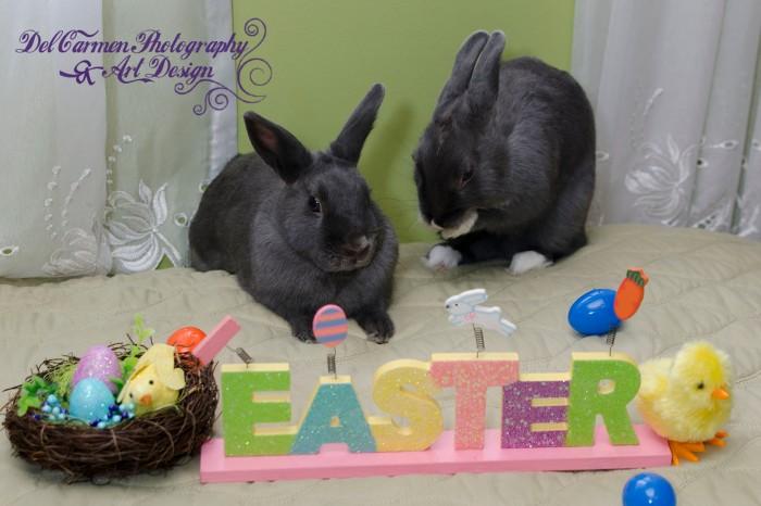 Easter2014