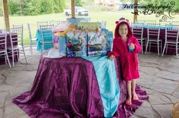 Abby's 5th Frozen Birthday Party July 2015